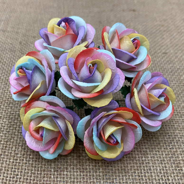 50 RAINBOW COLORED MULBERRY PAPER CHELSEA ROSES