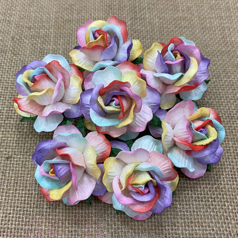 50 LARGE RAINBOW COLORED MULBERRY WILD ROSES 40mm